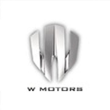 W Motors汽車公司