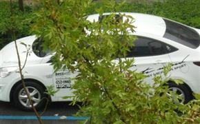 瑞纳加装个性车贴、鲨鱼鳍天线及发动机隔热棉